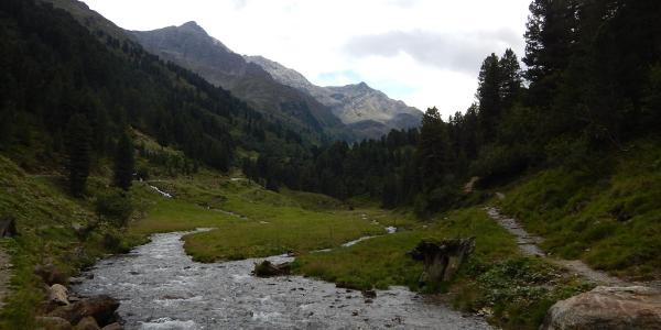 Am Fotscherbach - Aufstieg zur Potsdamer Hütte