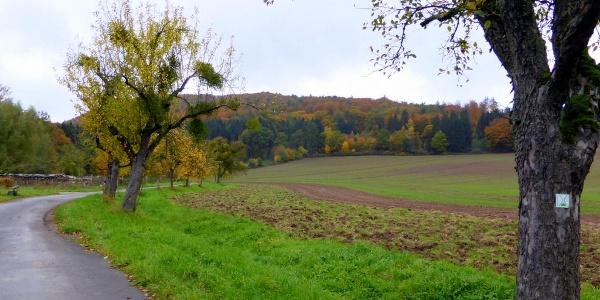 Blick zum Bierenberg