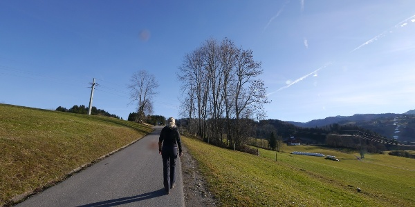 Die Asphaltstraße zur Alpe Mohr