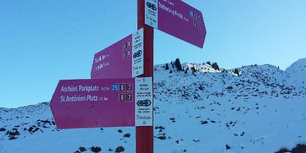Alp Valpun - das Trail-Kreuz zwischen St.Antönien, Pany, Stelserberg