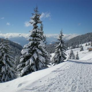 Sentiero per il rifugio Meraner Hütte