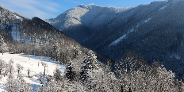 Winterlicher Hohenstein aus der Sois