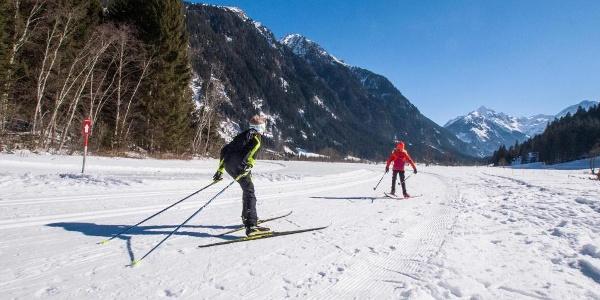 XC skiers running through Tetter Moor