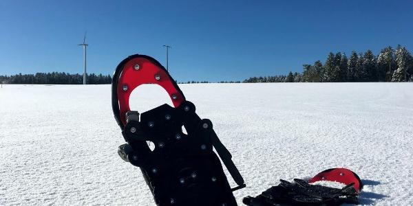 Schneeschuhe an den Windrädern