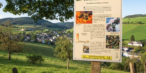 Direkt am Weg: Bienenlehrpfad der Imkerei Winfried Kieserling