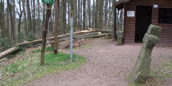 Wilde Sau - Eisenach