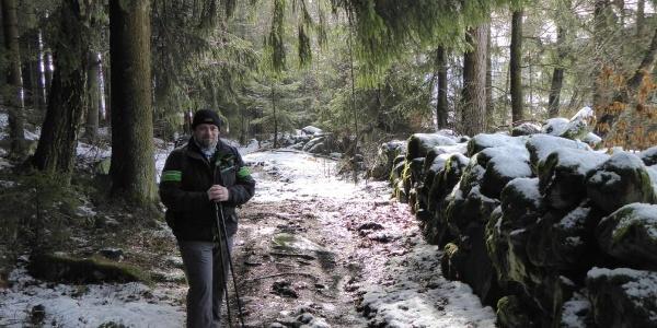 Waldpfad kurz vor Elisabethszell