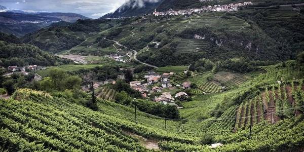 Vista panoramica Valle di Cembra