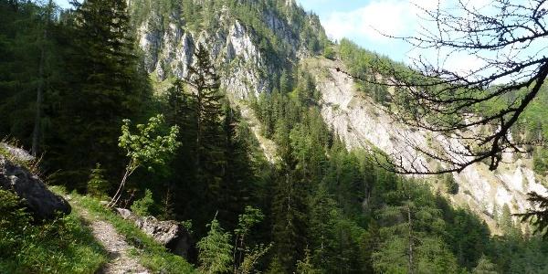 Abstieg Hinterwildalpen Eisenerzer Höhe