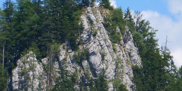 Blick zum Mitterberg in Wildalpen
