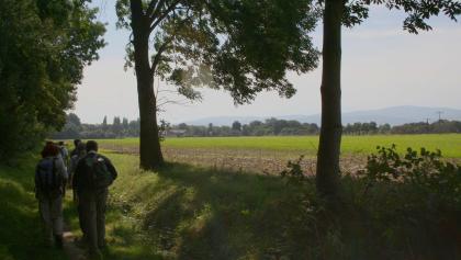Pilgerwanderung auf der Via Romea mit Brockenblick