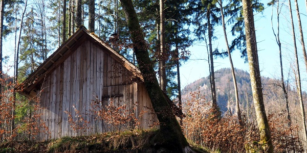 Jagdhütte 570m