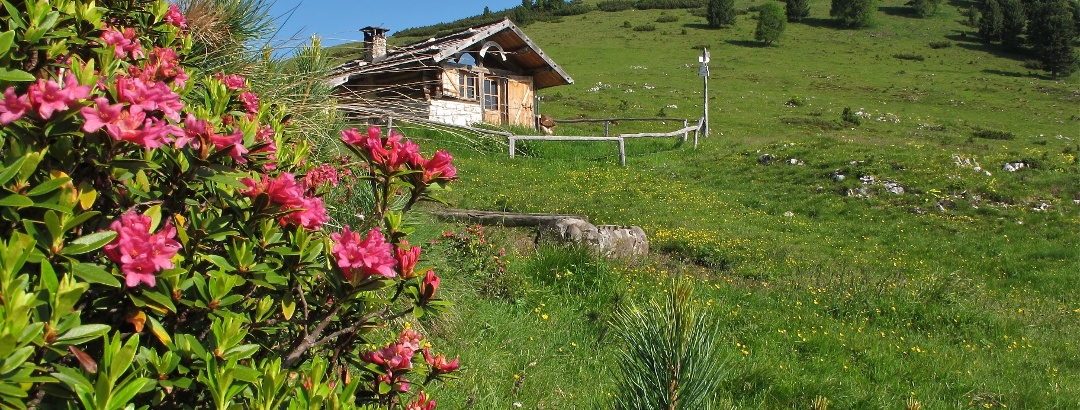 Armentagiola Hütte