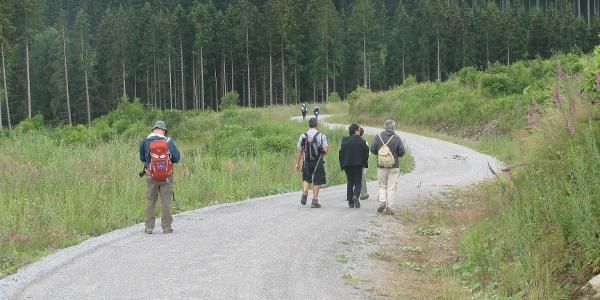 Kurz vor dem erreichen der Überleitungssperre Königshütte