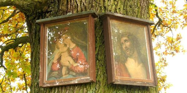 Bilderbaum (Bilder wegen Vandalismus entfernt)