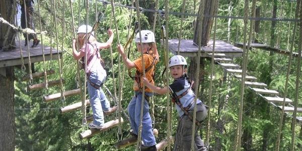 The adventure Forest in Vercorin