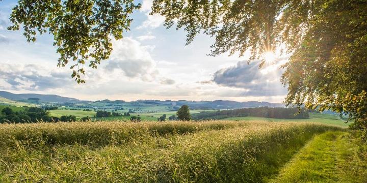 Sauerland-Wanderdörfer, Qualitätsregion wanderbares Deutschland