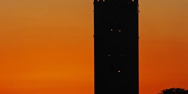 Marrakech - Große Moschee
