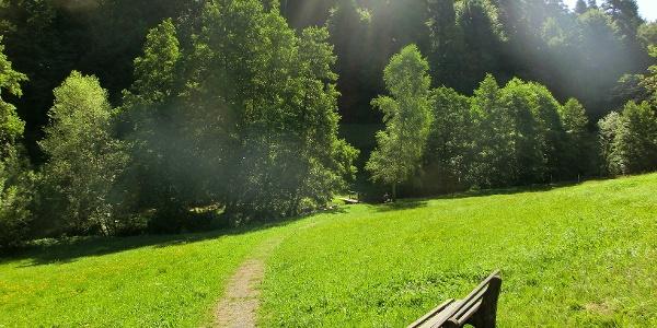 Blick über den Gaisbach