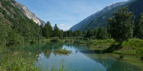 The beautiful Schalisee in Täsch invites one to rest