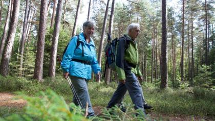 Wanderung in Wart   Foto: Ulrike Klumpp