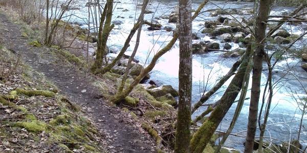 Mangfall Uferpfad