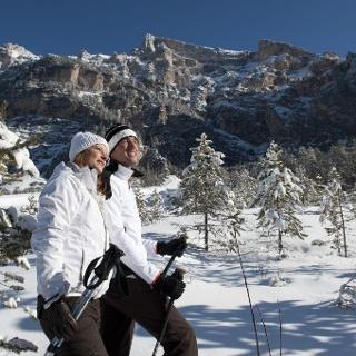 Winterwandern Tamersc
