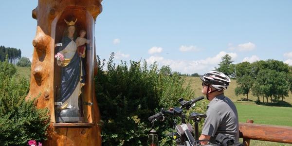 Unterwegs auf dem 5. Abschnitt der Schlossparkradrunde