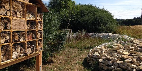 Insektenhotel und Steinriegel