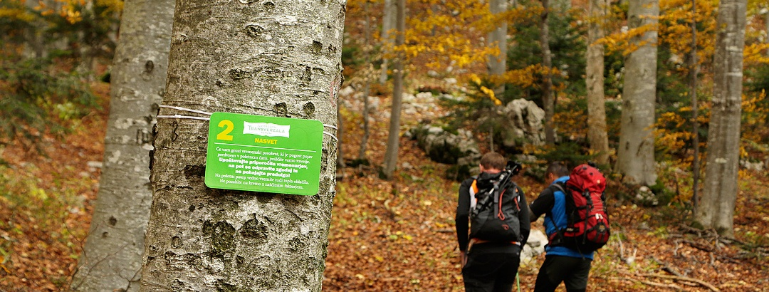 trail towards Veliki Sneznik