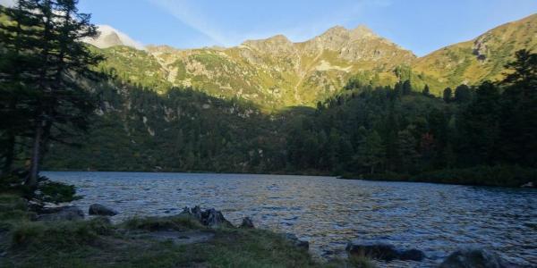 Großer Scheibelsee