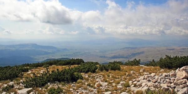 view on Duvanjsko field