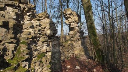 Burgruine Werdeck