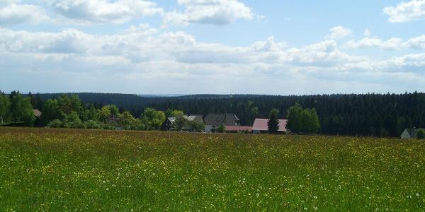 Blick von der Tannenstub Richtung Süden auf Ödenwald