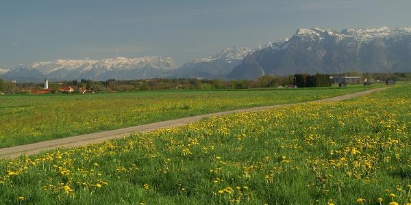 Blick Richtung Surheim im Hintergrund ist der Untersberg