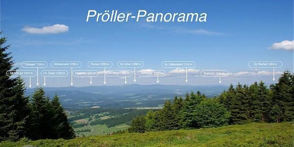 Panorama-Detail