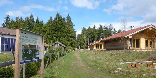 Am Beginn beim Kletterwaldparkplatz