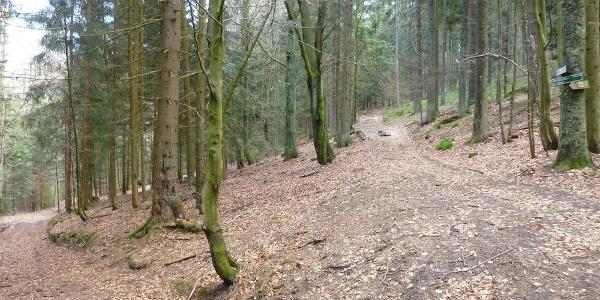 nach Hohenried - Verlassen von Weg 18 - rechts bergauf nach Ödwies