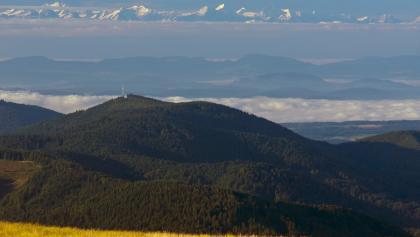 Alpenblick vom Belchen