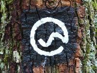Logo Wanderhöhepunkte