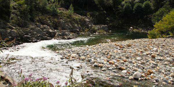 Flussbett in Traffiume