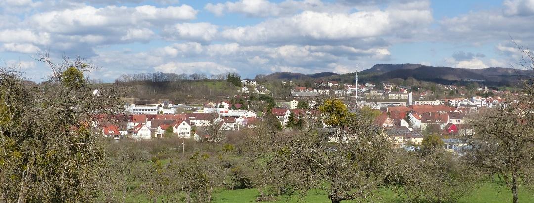 Blick auf Hechingen