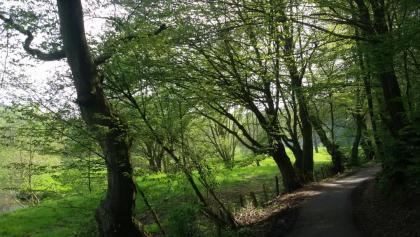 Wanderwege im Wurmtal