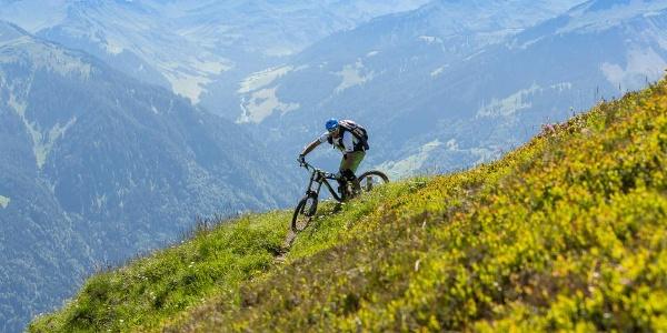 Mountainbiker in den Bergen