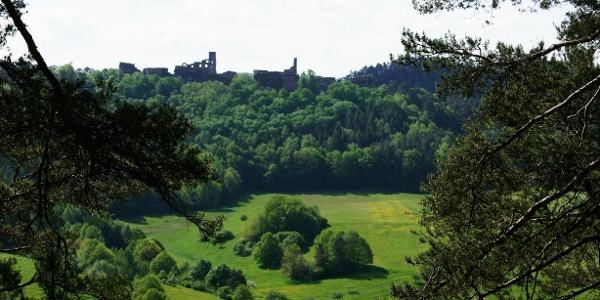 Blick auf die Dahner Burgen