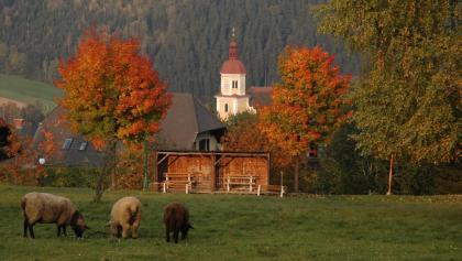 Herbstlicher Blick auf Birkfeld