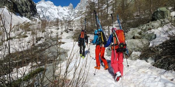 Ob mit Fellen oder Ski tragen hängt vom Datum und vom Winterlauf ab. Hinten der Pic Coolidge (3775 m) und - die Nadel rechts davon - Le Fifre (3699 m).