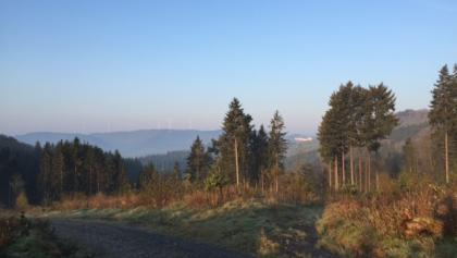 Highest point. View on castle Wittgenstein