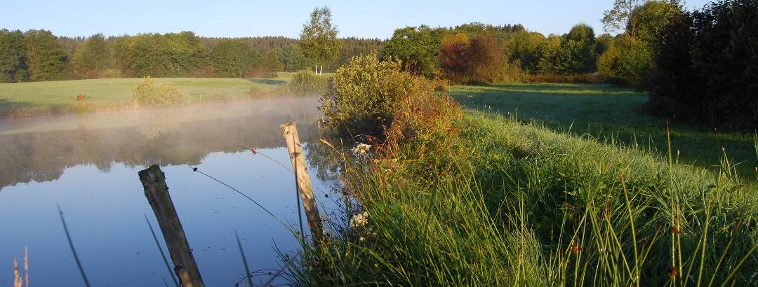Naturschutzgebiet Muschwitztal