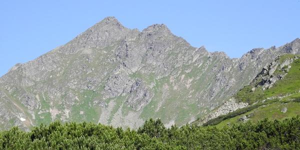 Blick auf den Gamskogel mit Ostgrat